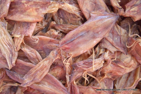 Dried Splendid Squid (Eyeless)