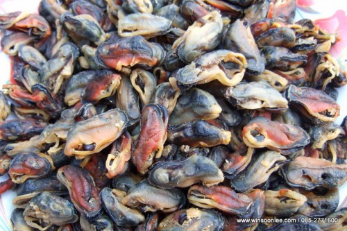 Dried Boiled Green Mussel ( Whole )